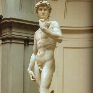david-scan body (knee)