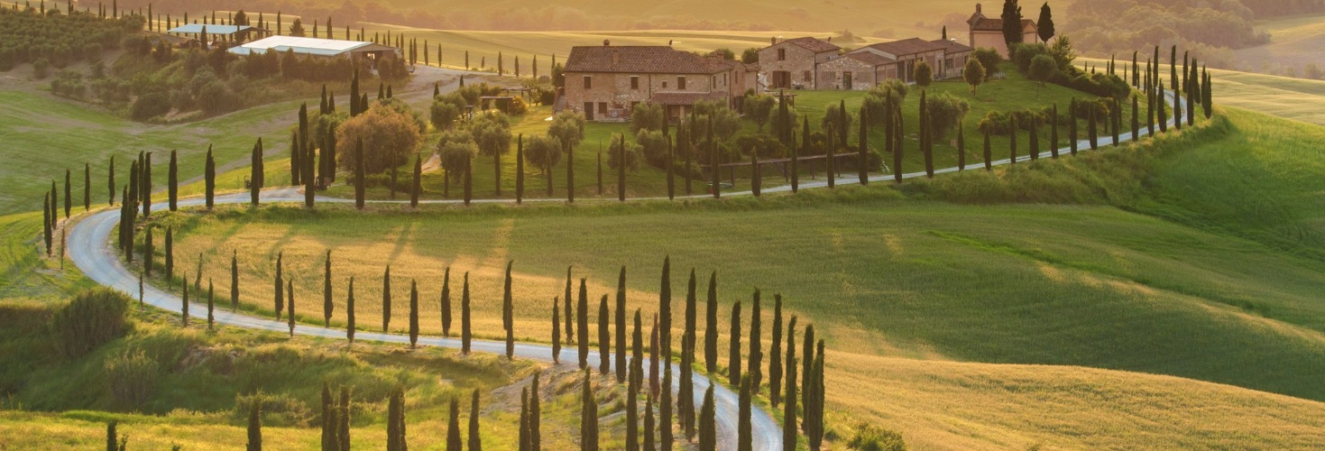 tuscan landscape with cypress trees
